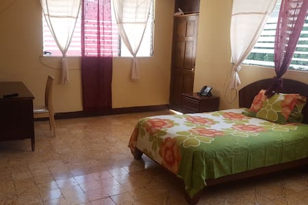 $45 Private room, & car rental @ $45/d if needed - Petion-Ville
