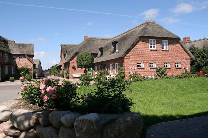 """""""Zweite Heimat"""" Oldsum, Urlaub unterm Reetdach"""