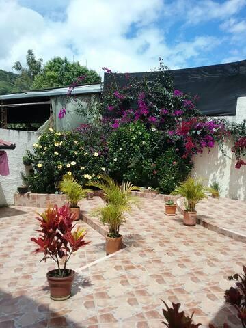 Patio- Jardín