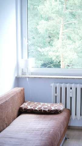 Sopot Pokój z pięknym widokiem na las u artysty