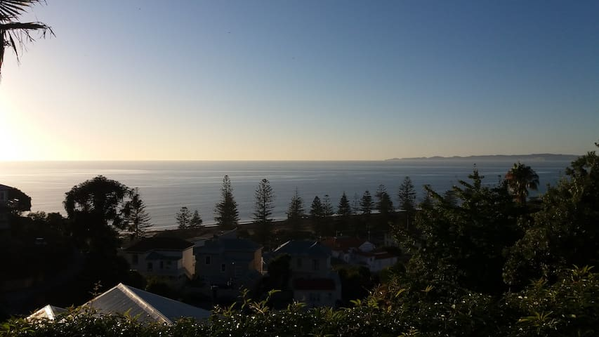 Magnificent sea views historic home - Napier - Talo