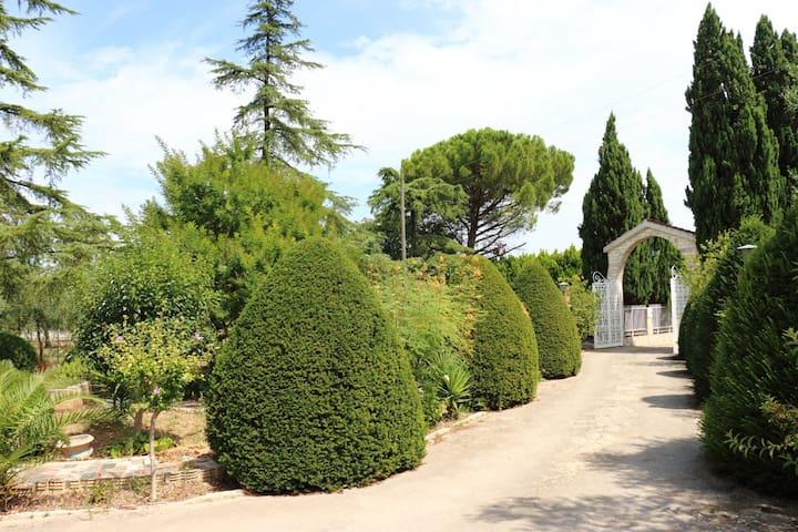 Villa con grande giardino e piscina. - Palombaio - Casa de campo