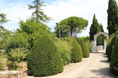 Villa con grande giardino e piscina.