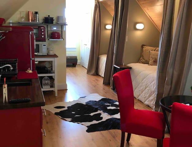 Cozy Studio Garage Apartment Close to Charlotte
