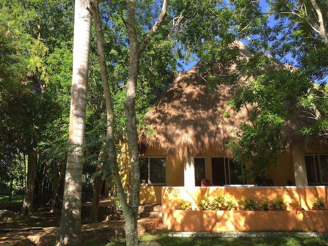 Kan Kúul Ya'axché (Cuatro Ceibas) Country House - Mérida - House