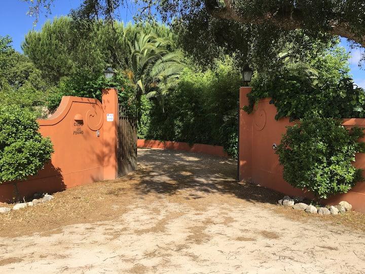 Casa do Sobro Villa exclusiva com piscina e jardim