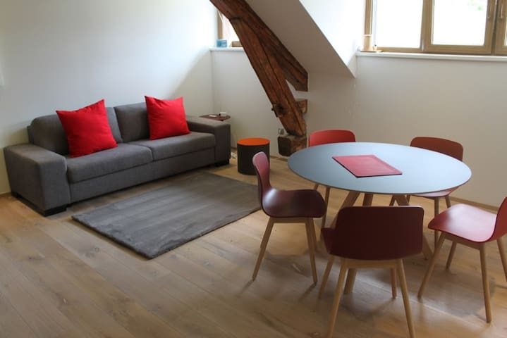 Modern Living and Dining Area