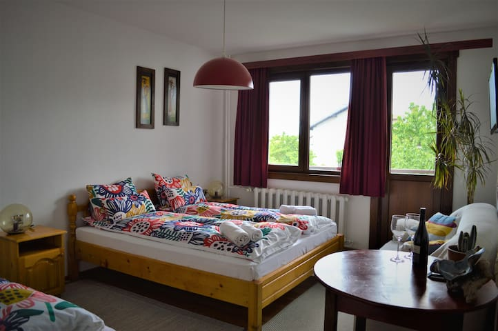 Comfy Double Room * Sema Guest House * Bansko