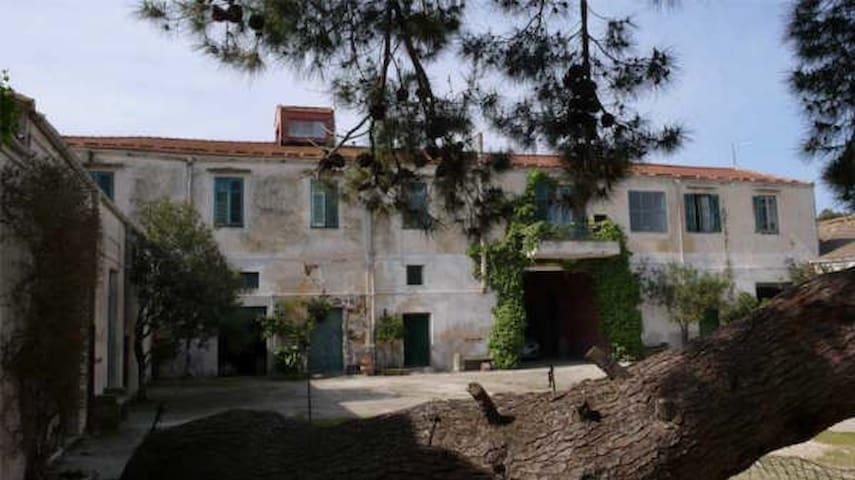 Casa in baglio antico - Monreale - Casa