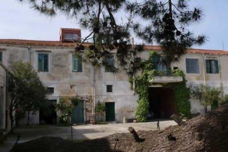 Casa in baglio antico - Monreale - Haus