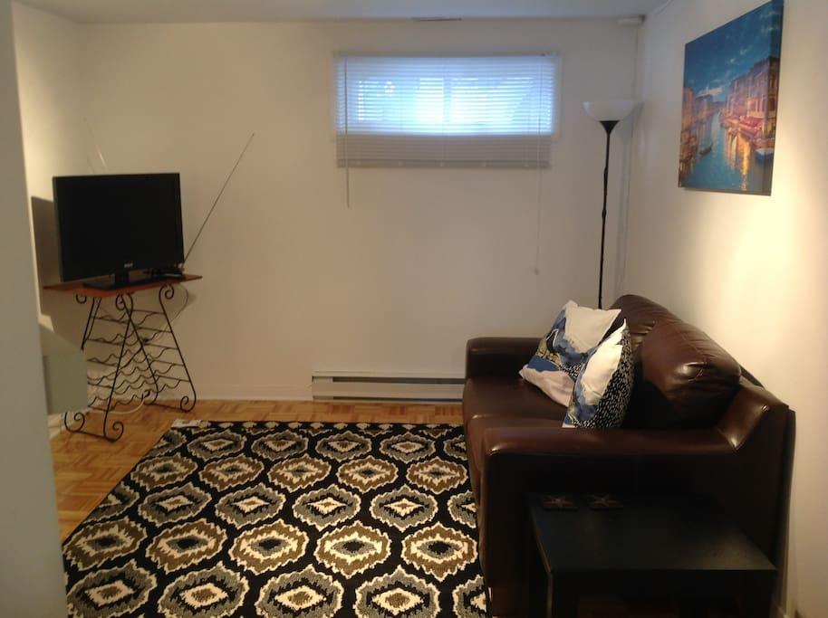 Salon avec télévision,causeuse en cuir véritable table de salon et tapis décoratif