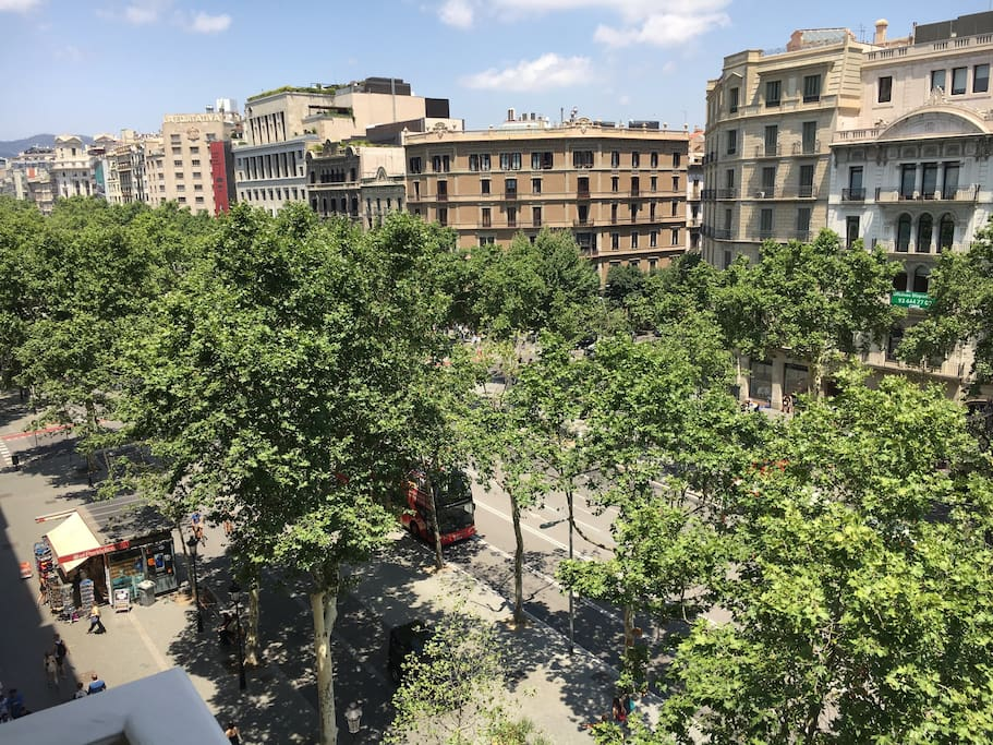 Views Paseo de Gracia