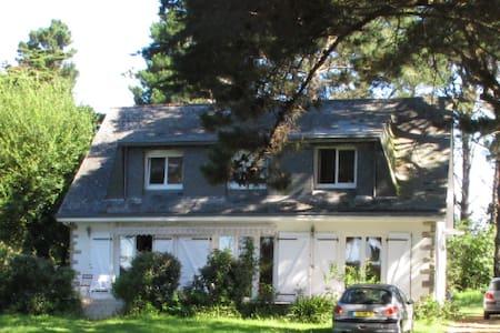 Agéable maison  de bord de mer bordée de pins. - Saint-Gildas-de-Rhuys