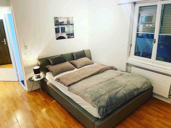 Brand New Studio in the Center of Zurich Old Town