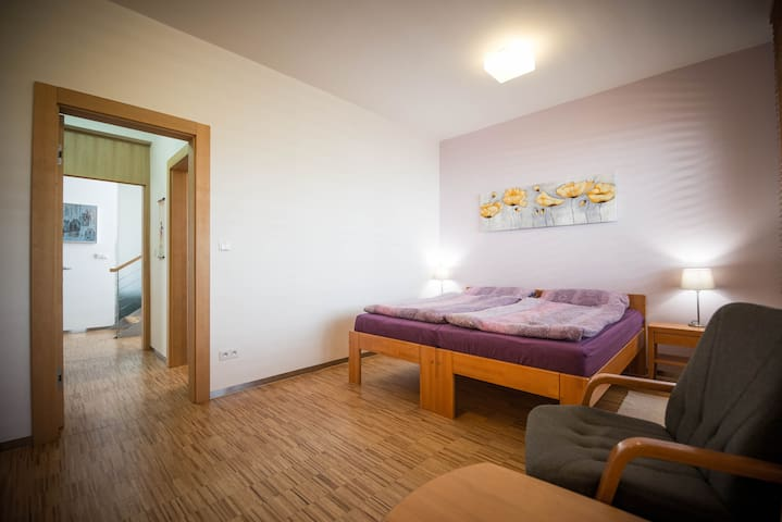 MODERN GUEST ROOM IN FAMILY VILLA - Horoměřice - Hus