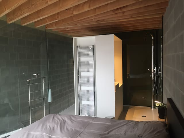 View from the bed in bedroom #1, shower  , bathroom and glass wall.