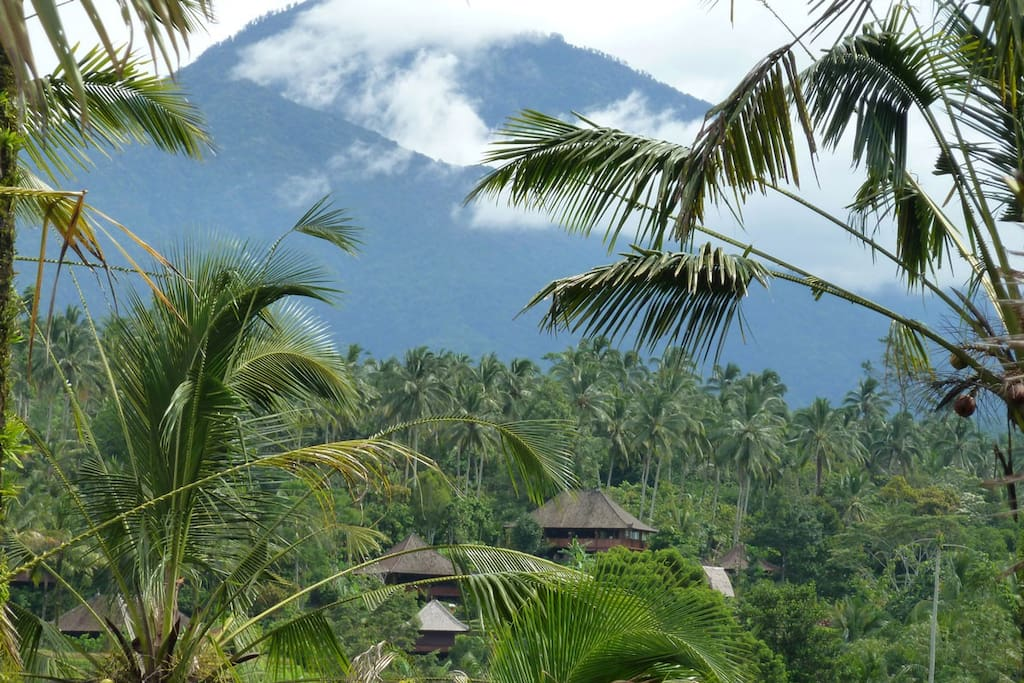 On the slopes of Batukaru in the heart of Bali