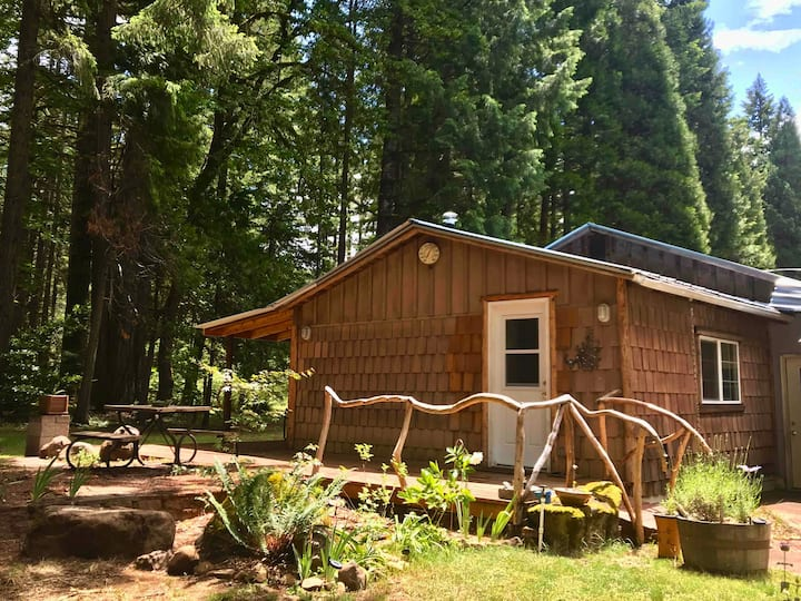 Evergreen Cottage - quiet getaway, no cleaning fee