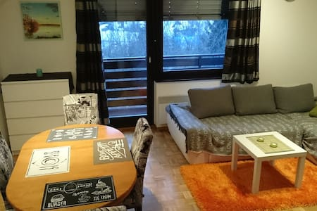 Apartment with a great view - bikes for free :-) - Bohinjska Bistrica - Apartamento