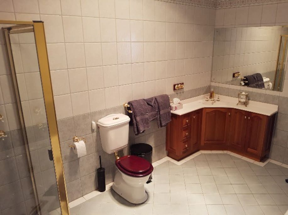 Exceptionally large private bathroom just one step from the bedroom
