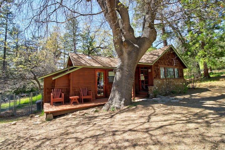 Rustic cabin in the woods w/ private hot tub & convenient location - dogs ok!