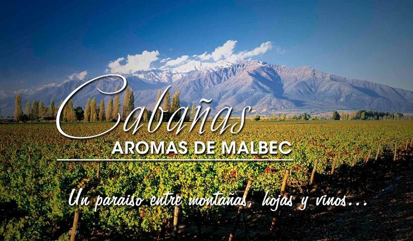 Cabañas aromas de Malbec  ( 6  Pax)