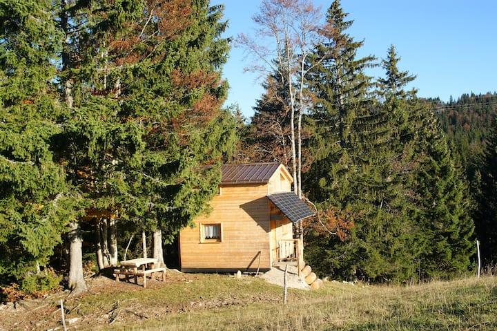La Dalue, cabane sur pilotis dans la végétation
