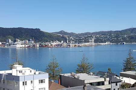 Oriental Bay Stunning Setting for Your Groups Stay