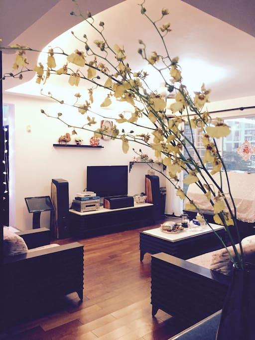 客厅全景,带钢琴。