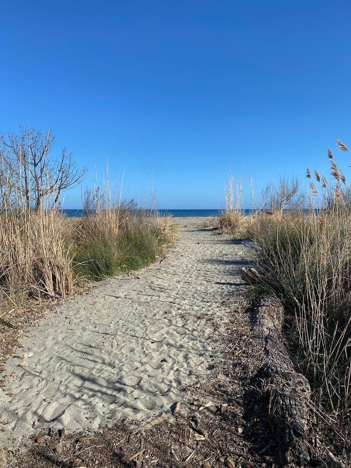 Jolie maisonnette à 2min de la mer à pied