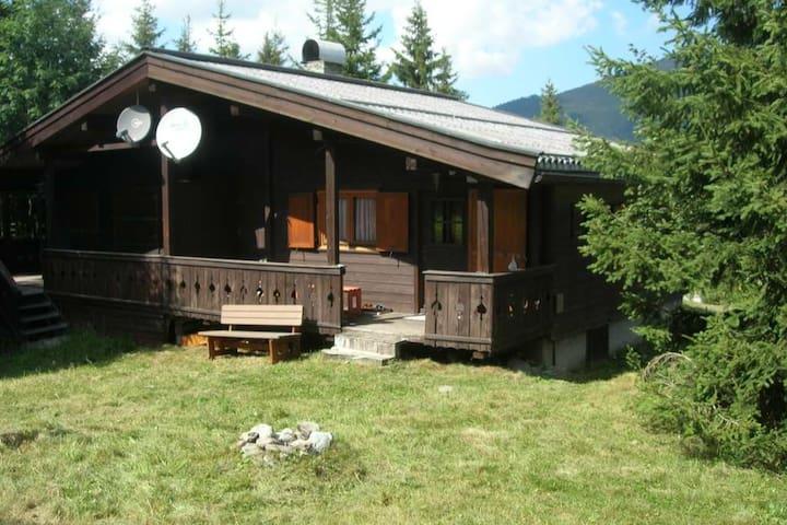 Urige Ski- und Wanderhütte in Hochkrimml, Tirol - Hochkrimml - Kulübe