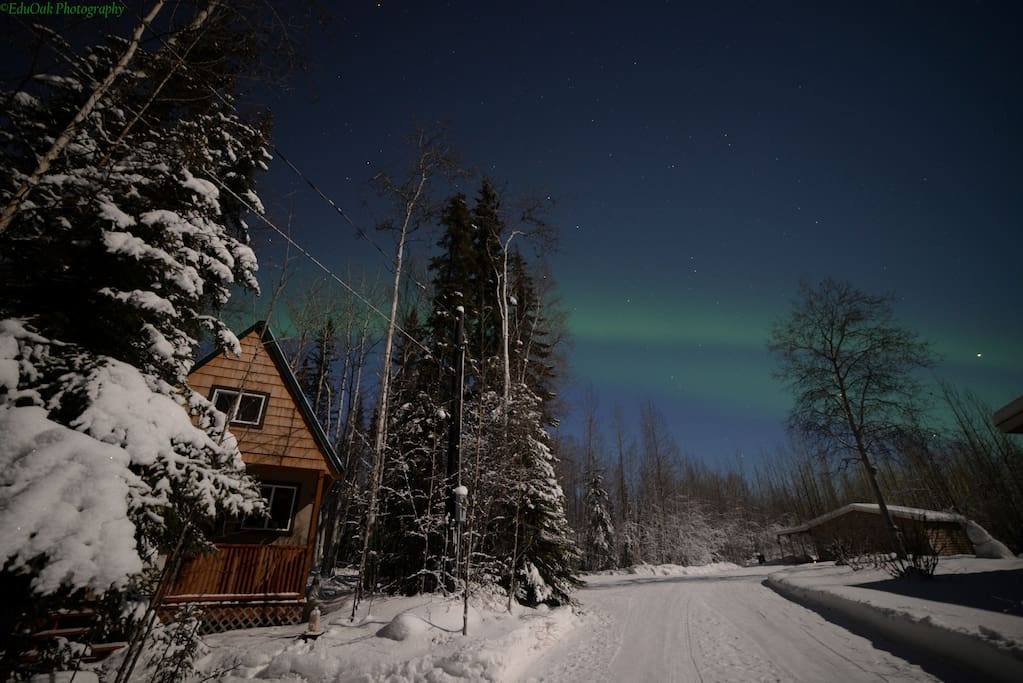 Northern Lights on our property