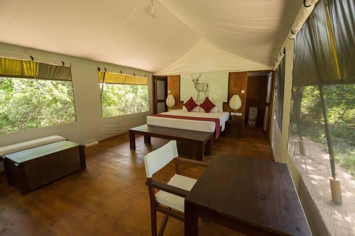 The Topan - Yala Camping Safari