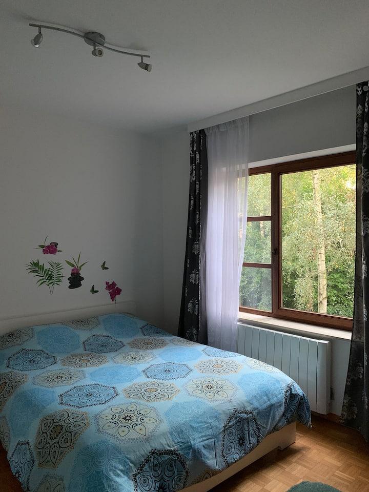 Chambre spacieuse tout confort ULB Cim. d'Ixelles.