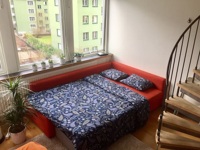 Central and affordable couch for 2 - Malmö - Huoneisto