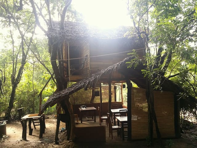 caveman eco  Lake View  tree house
