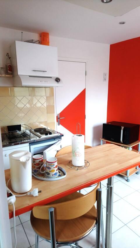 Appartement Saumur rive gauche. Bord de Loire