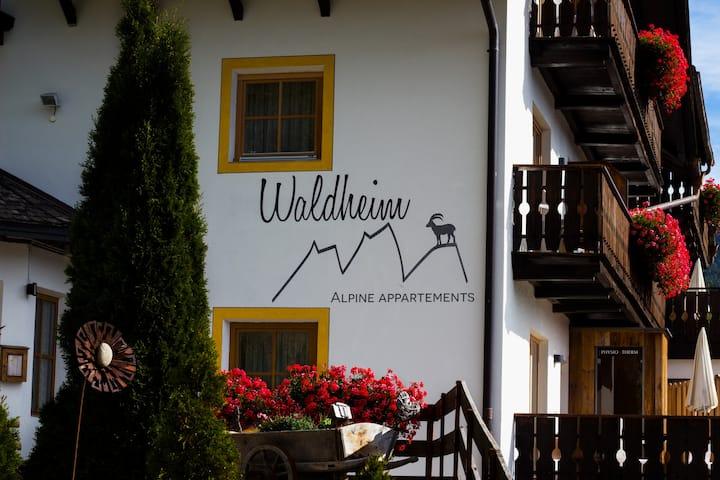 Waldheim - WG Gabler 55 - 81 m²