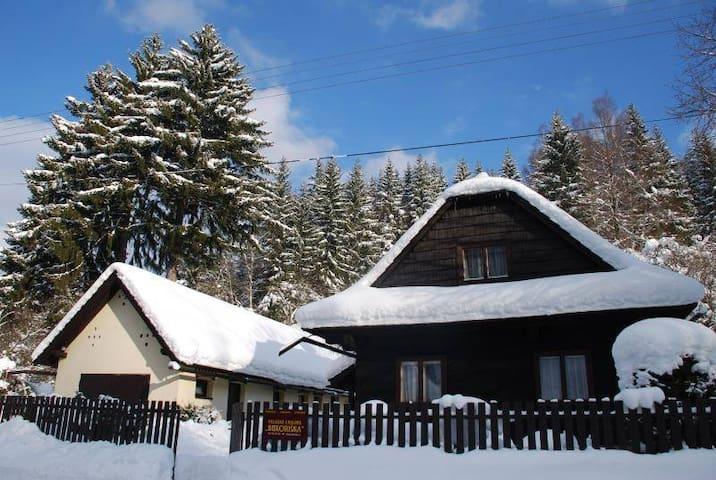 Valašská chalupa Bukoriška - Velké Karlovice - Chalé