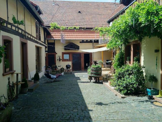 Schönes Apartment in traumhaftem Ambiente - Heuchelheim bei Frankenthal