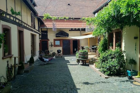 Schönes Apartment in traumhaftem Ambiente - Heuchelheim bei Frankenthal - Apartment