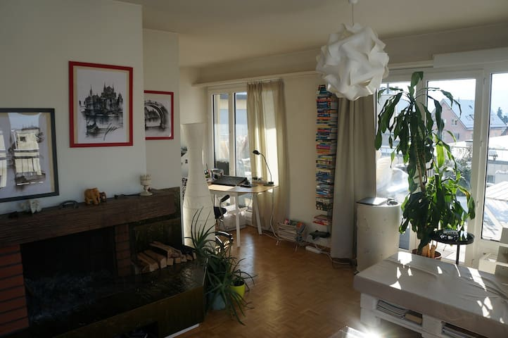 Beautiful bright 2room apartment with huge terrace - Zurique