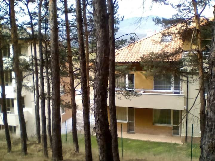двух комнатная квартира в лесу рядом с центром