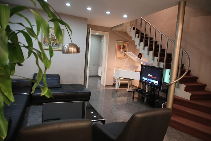 Apartment in the center of Tbilisi (Penthouse)