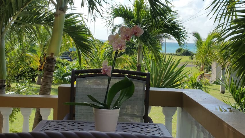 Orchid Retreat of St. Croix - Frederiksted - Pis