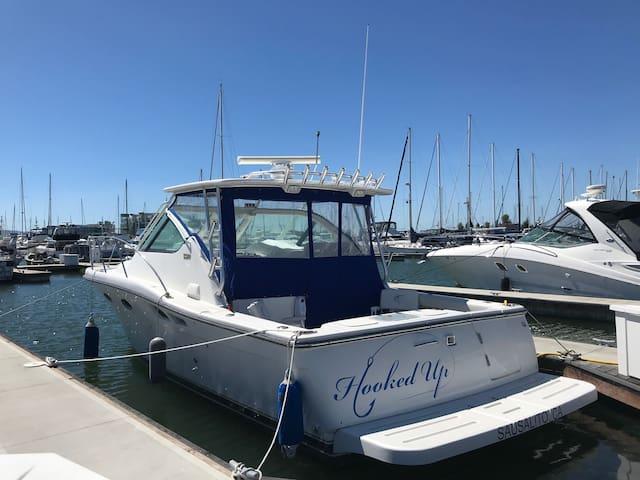 """Hooked Up"" Tierra 33' Powerboat"