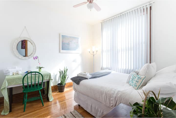 Sunny and Open Apartment