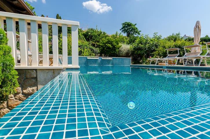One-bedroom apt in Orašac villa with heated pool