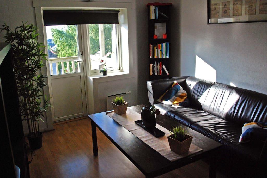 Stue med utgang til solrik veranda