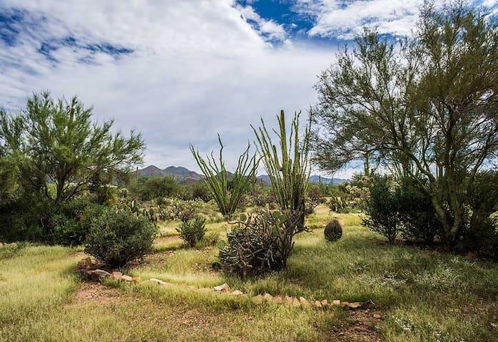 Studio De Saguaro-Hot Tub Pleasure at Alma Del Sol
